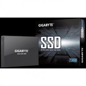 GIGABYTE-GP-GSTFS30256GTTD