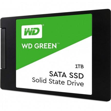 WD-WDS100T2G0A